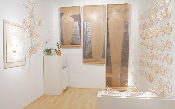 Installation view of Lauren A Toomer solo exhibition at ASC Projects, June 2013