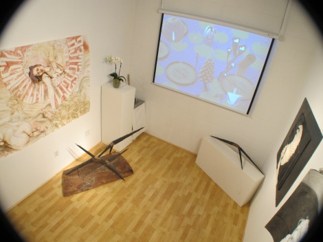 Installation view of launch show at A Simple Collective, 2013 (photo by Tim Roseborough)