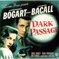 Film_DarkPassage_poster